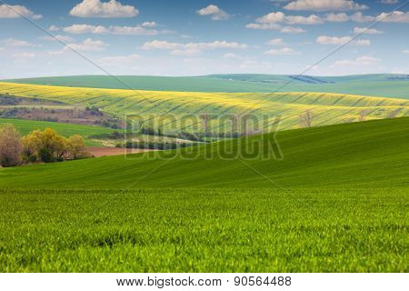 Colorful Landscape of fields in countryside - fresh colors spring  landscape