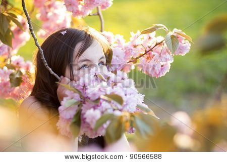 Cute Girl Amid Cherry Bloom