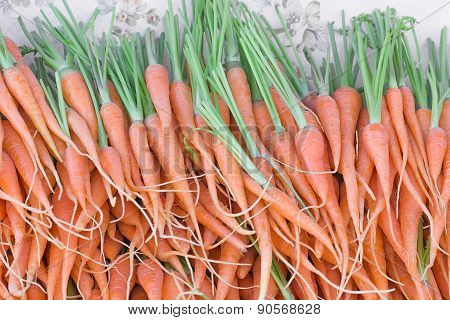 Fresh Baby Carrots Bunch On Sell