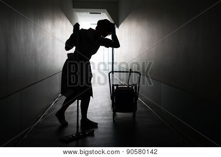 Silhouette Of Female Maid With Mop