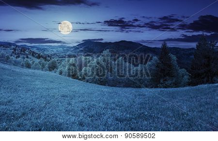 Hillside Meadow Near Forest In Mountain At Night