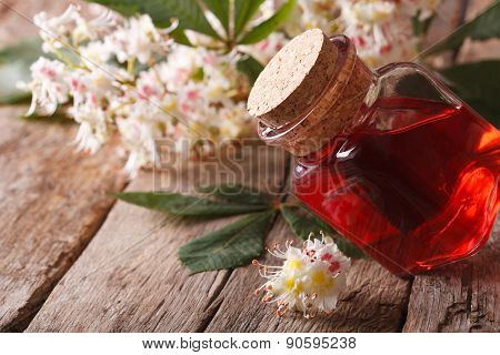 Medicine Chestnut Flower In A Bottle. Closeup Horizontal