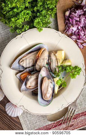 Frozen Mussels.