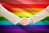 stock photo of transgendered  - Businessmen shaking hands with flag on background  - JPG