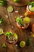 stock photo of mule  - Icy Cold Moscow Mules with Ginger Beer and Vodka - JPG