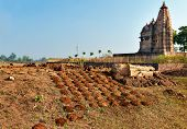 image of khajuraho  - Dry cow dung near Javari Temple - JPG