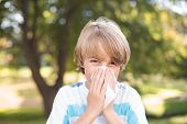 image of blowing nose  - Little boy blowing his nose on a sunny day - JPG