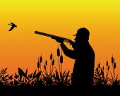stock photo of duck-hunting  - Hunter aiming a shotgun in a wild duck in the grass and reeds - JPG