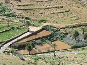 image of atlantic ocean  - Agriculture on terraces in the green valley of Vega de Rio Palmas on the Canary Island Fuerteventura - JPG