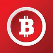 picture of bitcoin  - Vector round white icon with bitcoin symbol - JPG