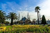 pic of constantinople  - View of the Blue Mosque  - JPG