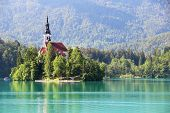 picture of mary  - Assumption of Mary Pilgrimage Church on the island at Bled lake - JPG