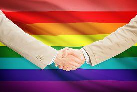 image of transgendered  - Businessmen shaking hands with flag on background  - JPG