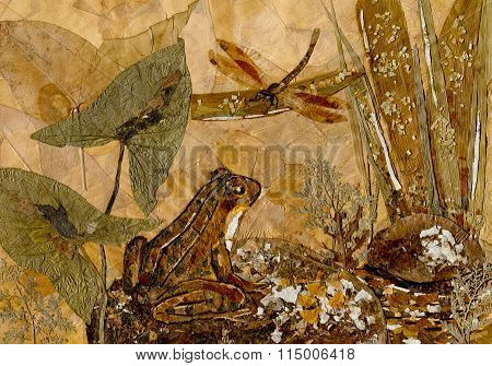 Frog And Dragonfly. Dried Leaves Picture.