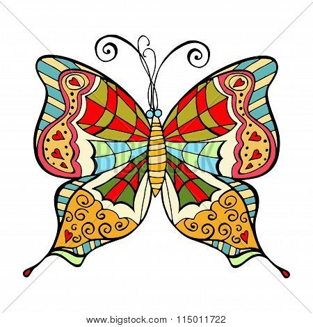 Amazing Fly Butterfly