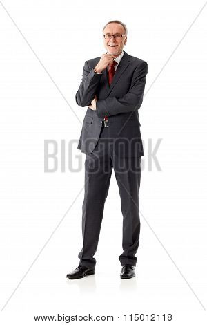 Isolated Mature Business Man, Standing