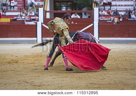 Spanish Bullfighter Cesar Jimenez In The Alley Waiting At The Paseillo Or Initial Parade Bullfight A