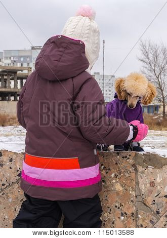 Poodle Puppy In Winter Clothes Playing With A Child
