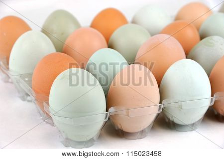real colorful chicken eggs in the container