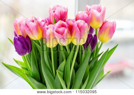 Beautiful Pink And Purple Tulips. A Bouquet Of Flowers For March 8, Or Valentine's Day