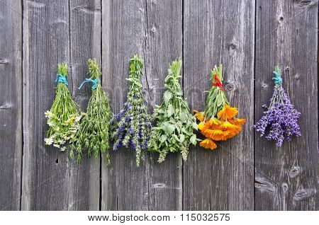 Different Bouquets Of Herbs Hanged To Dry