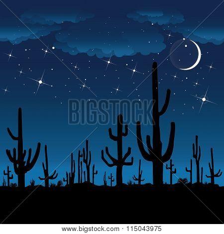 Saguaro Cactus At Night.