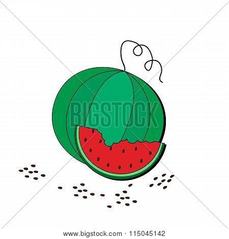 Watermelon and slice vector illustration