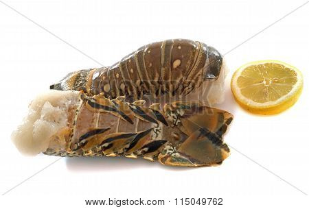 Tails Of Spiny Lobster
