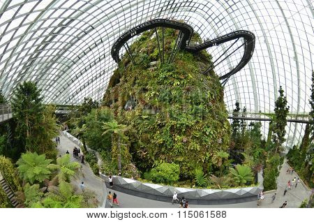 Cloud Forest At Gardens By The Bay In Singapore