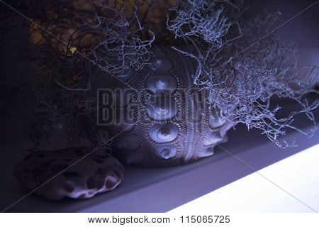 Modern Style Interior Details: Flowerpot With Ornament And Houseplant. Led Lighting
