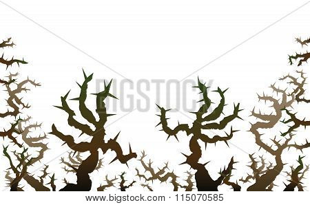 Brier Threatening Thorns