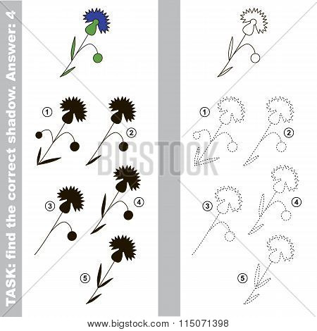 Cornflower. Find true correct shadow.