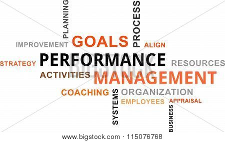 Word Cloud - Performance Management