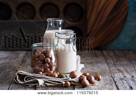 Hazelnut nut vegan milk