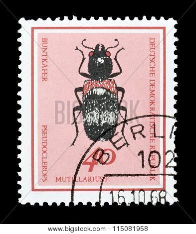 GDR 1968