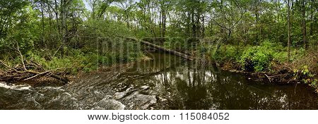 Fallen tree over a river panorama