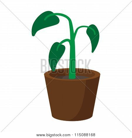 House plant in pot cartoon icon
