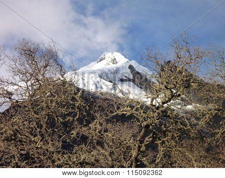 Snow Capped Peak At The Santa Cruz Trekking In Cordillera Blanca In Peru
