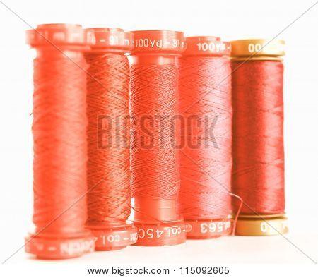 Thread Vintage