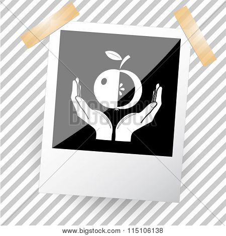 apple in hands. Photoframe. Raster icon.