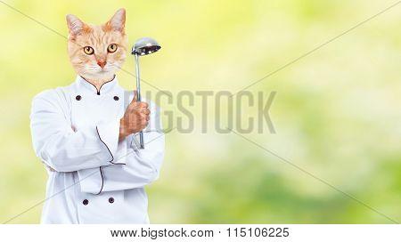 Cat chef.