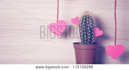 Red hearts with a cactus.