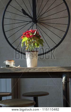 Red Flowers In Flowerpot