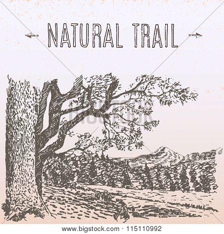 natural trail illustration
