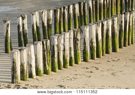 Two Rows Of White Green Groynes On A Beach .