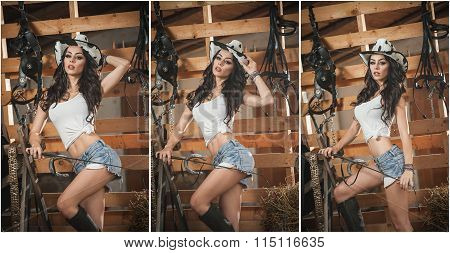 Beautiful brunette girl with country look, indoors shot in stable, rustic style. Attractive woman