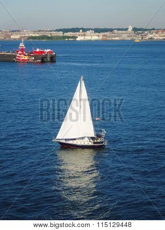 Sailboat In Upper New York Bay