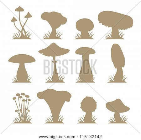 Mushrooms vector silhouette illustration set. Different types of mushrooms isolated on white background. Nature mushrooms for cook food and poisonous mushrooms flat style