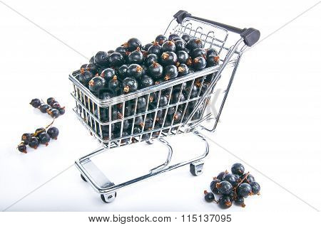 Mini Shopping Cart With Blackcurrants