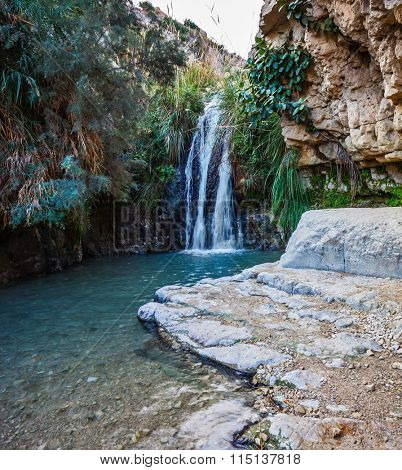 Beautiful waterfall and a small scenic lake with clear water.  Ein Gedi, Israel